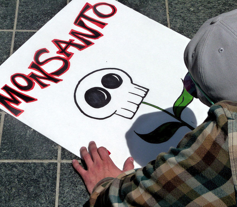 monsanto s march into biotechnology Monsanto canada inc v schmeiser [2004] 1 scr 902, 2004 scc 34 is a leading supreme court of canada case on patent rights for biotechnology , between a canadian canola farmer, percy schmeiser , and the agricultural biotechnology company monsanto.